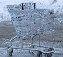 Shopping In The Ice by Linda Miller Gesualdo