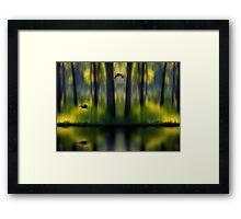 524 Framed Print