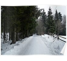 Winter Road in Sweden Poster