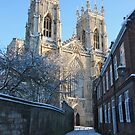 York Minster, 2010 by globalgreg