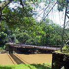 Hanging bridge  by Guy Tschiderer