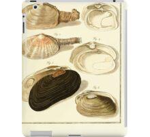 Neues systematisches Conchylien-Cabinet - 298 iPad Case/Skin