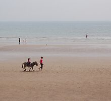 Walking the Donkeys on the Beach by TonyBrooks