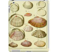 Neues systematisches Conchylien-Cabinet - 305 iPad Case/Skin