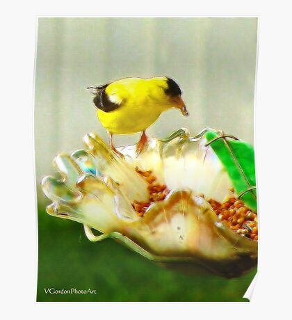 He Eats Like a Bird (After) Poster