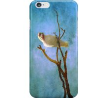 Corellas at Hepburn Srings  iPhone Case/Skin