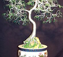 Oriental Bonsai, wire tree sculpture by Sal Villano