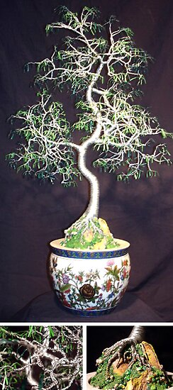 Oriental Bonsai, wire tree sculpture by Sal Villano