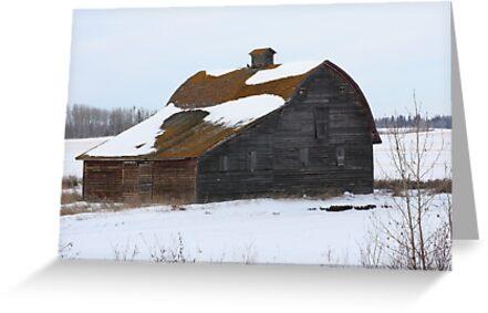 Lonely Prairie Barn   by Leslie van de Ligt