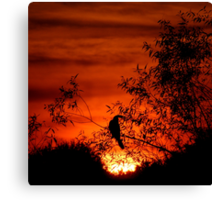 Farewell To The Day ~ Part Five Canvas Print
