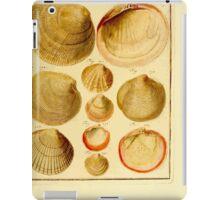 Neues systematisches Conchylien-Cabinet - 333 iPad Case/Skin