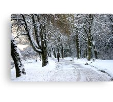 This is what I call COLD! Canvas Print
