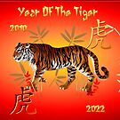 YEAR OF THE TIGER-text by Lotacats
