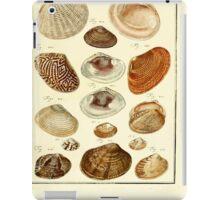 Neues systematisches Conchylien-Cabinet - 339 iPad Case/Skin