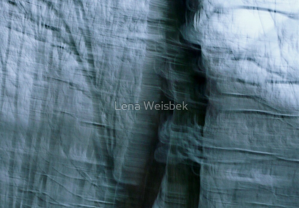 The Wind Series V by Lena Weiss