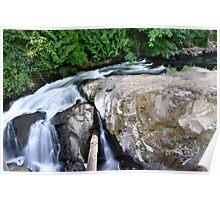 Tumwater Falls1 Poster