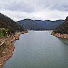 Burrinjuck Waters State Park by GailD