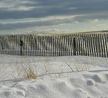 Beach Fence by MaryinMaine