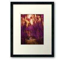 311 Framed Print