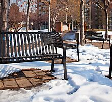 Park Benches in Winter Time by Phill Danze
