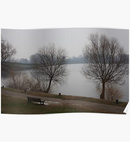 A gray winter day Poster