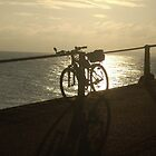 silhouette, bike on railings against low sun Budleigh Salterton by Leyh