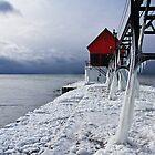 Frozen by Sarah Van Geest