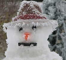 Frosty The Snowman by Linda Busby