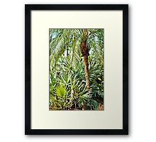 Tropical Palms Framed Print