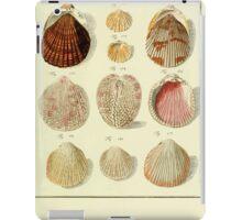 Neues systematisches Conchylien-Cabinet - 313 iPad Case/Skin