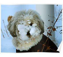 Snowdog Poster