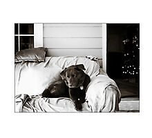 Miss Darla Photographic Print