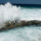 Wild sea by Melina Roberts