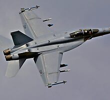 Boeing F/A 18E Super Hornet by Barrie Collins