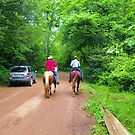 Country Traffic by Susan Russell