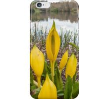 Yellow Skunk Cabbage Flower iPhone Case/Skin