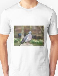 Wood Pigeon Perched On Post T-Shirt