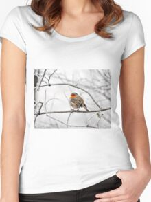 Robin On Frosty Branch Women's Fitted Scoop T-Shirt