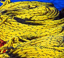 Yellow coils by Julia Harwood
