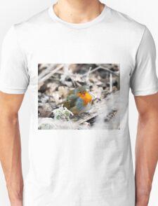 Frosty Robin Unisex T-Shirt