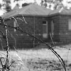 Through barbed wire by Laura Mitchell