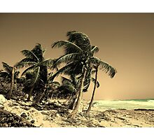 Paradise Lost Photographic Print