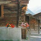 Munster, Switzerland, lovely old houses by BronReid