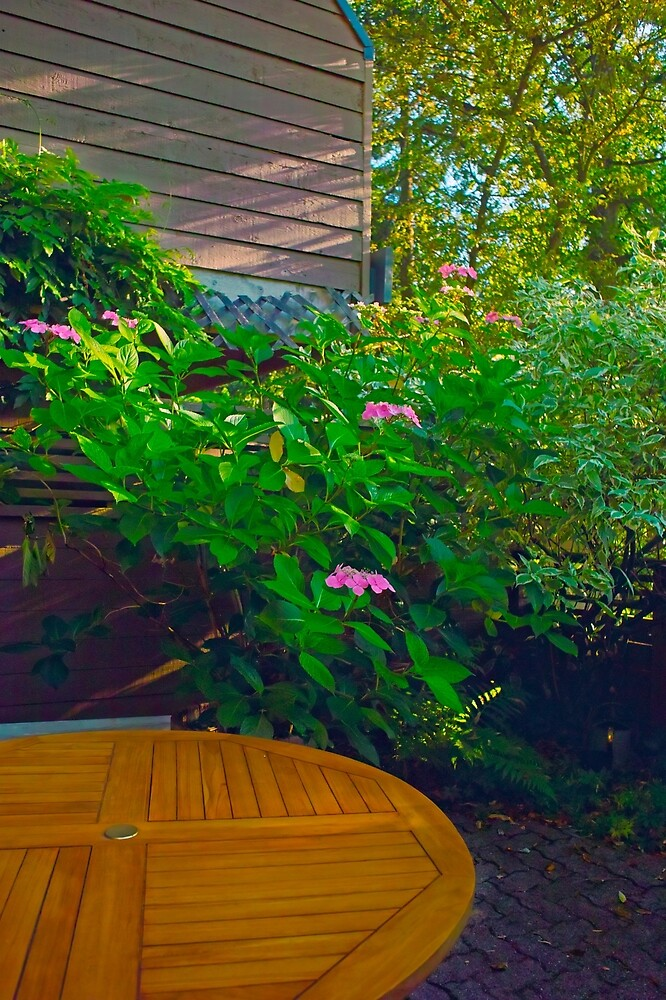 Summer Patio by Priscilla Turner