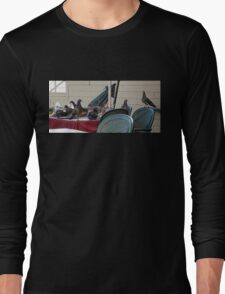 Pigeon Party Long Sleeve T-Shirt