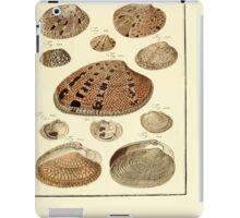 Neues systematisches Conchylien-Cabinet - 338 iPad Case/Skin