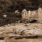 Lighthouse Keepers Cottage Sepia by Eve Parry