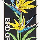Bird of Paradise by J.D. Bowman