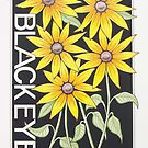 Black Eyed Susan by J.D. Bowman
