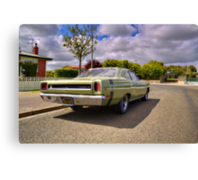 Road Runner, Invercargill Canvas Print